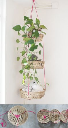 How to make a set of tied hanging baskets. Read on, it's super simple! - - How to make a set of tied hanging baskets. Read on, it's super simple! Useful Things How to make a set of tied hanging baskets. Read on, it's super simple! Diy Hanging, Hanging Baskets, Hanging Plants, Hanging Storage, Woven Baskets, Potted Plants, Wicker Baskets, Diys, Home Decoracion