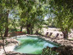 Umlani bushcamp review: the pool