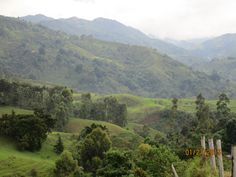Colombia's rolling green hills