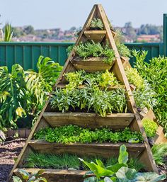 Make this pyramid planter to grow your own vegetables and herbs in a small garden or sunny courtyard. Just choose the sunniest spot and plant up. You can even make one for herbs and one for veggies, or plant up one by the front door and fill with colourful annuals. http://www.home-dzine.co.za/garden/garden-pyramid-planter.htm