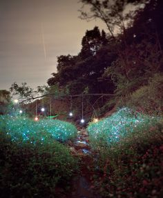 Photographer Lee Eunyeol constructs elaborate light installations that appear as if the night sky was flipped upside down with glowing stars and planets nested inside tall grass or between deep earthen cracks.