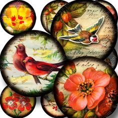 Printable little collages made from flowers and birds from dozens of different Victorian-era postcards, handwriting from the 1700s, and images from a Parisian 1850s book I own that has the most amazing engravings. Printables 760 by piddix.