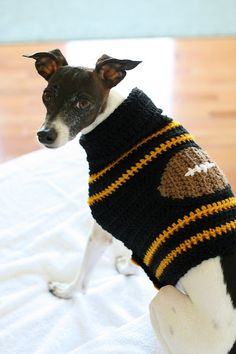 Southern Miss Football doggie sweater!!!! Gotta get one for Nola!