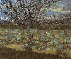 Image result for vincent van gogh paintings