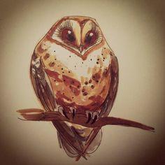 Day 68 - little barn owl.