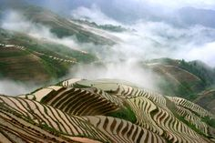 Terraced Rice Fields, Ping'an, China