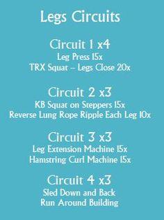 Leg Circuit 2