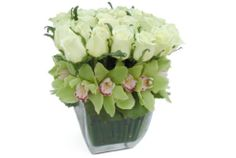 One of our most popular signature arrangements, this contemporary design features 25 stunning ivory roses. 12 cymbidium blossoms line the bed of the roses while horsetail can be seen submerged within the by glass vase. This arrangement stands at a Orchid Flower Arrangements, Orchid Centerpieces, Centerpiece Ideas, Orchid Plants, Rectangle Vase, Ivory Roses, White Roses, Cymbidium Orchids, Floral Arrangements