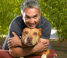 Cesar Millan is the dog whisperer - but his philosophies can easily transcend to parenting human babies, too -  I read one of his books and I was able to see myself as the pack leader for my dogs and for my human family, too.