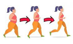 perder toda gordura da barriga