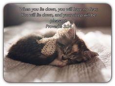 Those with a good conscience sleep sweetly