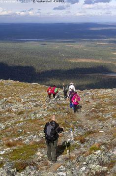 Vaeltajat tunturissa - maisema lapinmaisema tunturimaisema Lappi luonto…