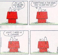 Snoopy en zijn wijsheden!!!