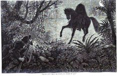 Small Town Myths – Myths, Urban Legends, and Scary Stories Legend Of Sleepy Hollow, Dark Creatures, Headless Horseman, Legends And Myths, Urban Legends, Native American Tribes, Scary Stories, Autumn Trees, Dark Art
