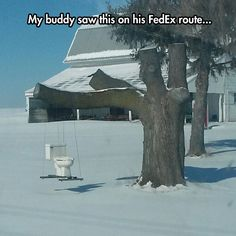 My Buddy Saw This On His FedEx Route
