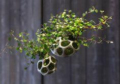Le pot de fleurs Cella, suspendu