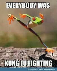 Everybody Was Kung Fu Fighting. Those kicks were fast as lightning, and it was a little bit frightening...  Who knows the rest of the lyrics? Who remembers this song?