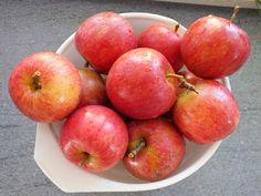 Plan Na Dziś: Kompot jabłkowy.