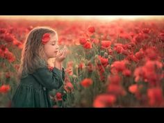 💖Relax Music 24/7 Live, Relax Music Piano, Beautiful Music To Sleep - YouTube Deep Sleep Music, Relaxing Music, Piano Music, Poppies, Couple Photos, Youtube, Beautiful, Live, Wall