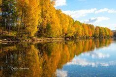 Autumn by Cecilie Sønsteby - Photo 125257359 - 500px