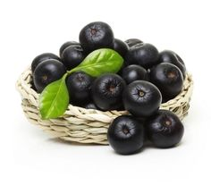 Acai berries are incredibly popular nowadays, with claims of significant weight loss being possible. Not just that, the berries themselves are supposedly the Benefits Of Berries, Anti Oxidant Foods, Beautiful Fruits, Organic Aloe Vera, Perfect Image, Perfect Photo, Easy Food To Make, Healthy Choices, Dog Food Recipes