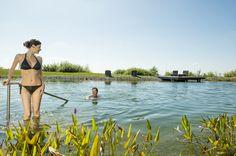 Die #Badeteiche im #Granithügelland entdecken. Weitere Informationen zu #Badeurlaub im #Mühlviertel in #Österreich unter www.muehlviertel.at/naturbaden - ©Oberösterreich Tourismus/Erber Seen, Austria, Bikinis, Swimwear, Water Pond, Tourism, Nature, Bathing Suits, Swimsuits