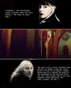 Yes, they did love Draco :D
