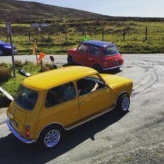 Austin Mini and Mini 1275 GT