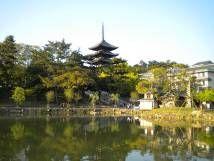 猿沢の池から見た興福寺五重塔