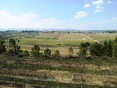 Casa de Santar Vineyards | via @PortugalConfidential #CentroPT #Portugal