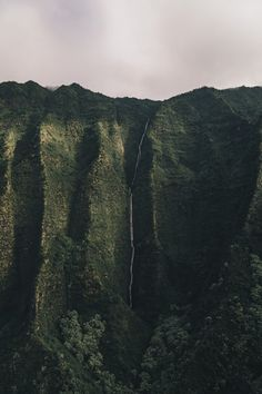 Though a rainforest covers most of the Kauai, Hawaii, there are many mountains used in Hollywood movies. Here's what to know before visiting Kauai. Hanalei Beach, Kauai Waterfalls, Kauai Coffee, Kauai Island, Hawaii Pictures, Welcome To The Jungle, Tropical Landscaping, Tumblr Wallpaper, Wallpaper Wallpapers