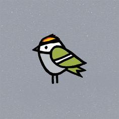 birds | Tumblr