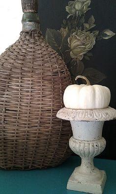 White pumpkins pumpkins and thanksgiving on pinterest
