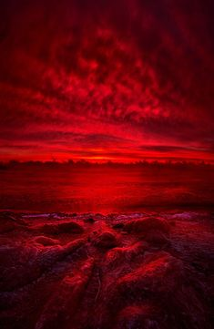 """""""More Than a Memory"""" Wisconsin Horizons by Phil Koch. Lives in Milwaukee, Wiscon. Aesthetic Colors, Aesthetic Pictures, Peinture Little Greene, More Than A Memory, Dark Red Wallpaper, Red Art, Red Walls, Photo Wall Collage, Shades Of Red"""