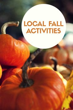 Looking for some fun fall activities? Get into the Halloween spirit with some of these upcoming activities and events! Blog Websites, Fun Fall Activities, Spirit Halloween, Some Fun, Check
