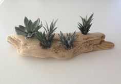 Driftwood Candle Holders, Driftwood Ideas, Nautical Theme, Air Plants, Planter Pots, Holiday, Crafts, Art, Art Background