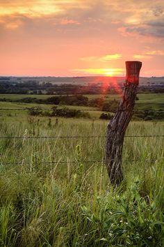 Fence Post at Sunset Kansas Scott Bean Photography