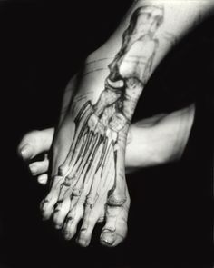 Bone/Feet by Katherine Du Tiel, part of the inside/outside series.  #anatomy #feet #photography