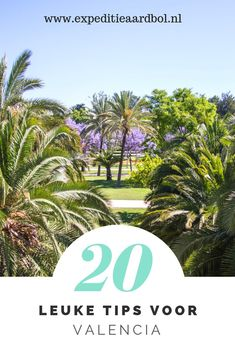 Spain is exciting and diverse, hug each of your inner artwork nerd at El Prado in The city, stroll the lively footpath along the Med in Barcelona . Travel Goals, Travel Tips, Holiday City, Parc Guell, Road Trip Adventure, Canary Islands, Sitges, Spain Travel, Tenerife