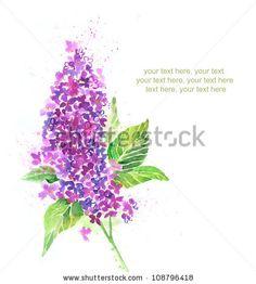 stock photo : watercolor lilac
