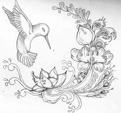 pencil drawings of flowers and butterflies - Google Search