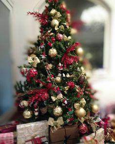 Que em breve toda família do Brasil possa escolher ter ou não uma árvore cheia de presentes como essa.  Feliz Natal!