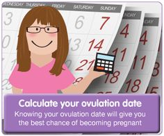 Ovulation calculator #Fertility #calculator - #Netmums