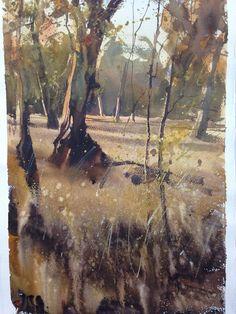 Alvaro Castagnet - Bush in Australia Watercolor Trees, Watercolor Artwork, Watercolor Artists, Watercolor Landscape, Abstract Landscape, Landscape Paintings, Landscapes, Tree Paintings, Australian Painting