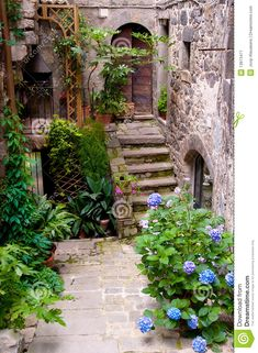 old street in Bolsena, Italy, a town in northern Lazio on the eastern shore of Lake Bolsena.An old street in Bolsena, Italy, a town in northern Lazio on the eastern shore of Lake Bolsena. The Places Youll Go, Places To Go, Beautiful World, Beautiful Places, Living In Italy, Old Street, Stairways, Italy Travel, Wonders Of The World