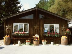Winery at Wilcox- Groundhog Wine Trail Stop 3