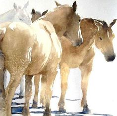 Horses by September Vhay Vhay's work is classic in subject matter and technique, modern in her composition and minimal approach. Realistic, yet they possess an impressionistic aura as well, a looseness that adds a sensitive dimension. She deftly exposes the interplay of light and dark, hard edges and soft, and dynamic areas against quiet, open space. Backgrounds drop away so that her muted earthen palette can evoke the very essence of an animal. (from Alta Mira Art)
