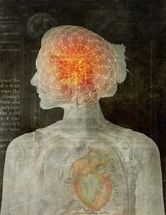 Dung Hoang: The Mind-Heart Connection