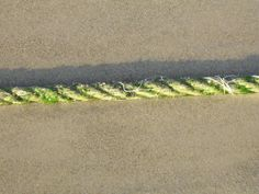 Cliënt verdeelt ruimte met touw: deel voor hem, deel voor mij. Het zichtbare resultaat raakt!  #Haptotherapie
