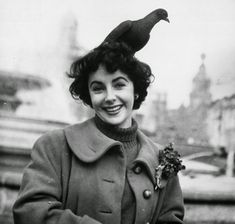 British born leading lady Elizabeth Taylor feeds the pigeons in Trafalgar Square, London. Description from avaxnews.net. I searched for this on bing.com/images